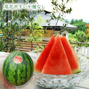尾花沢すいか種なし1玉(L〜3Lサイズ)|yamagata-umaies