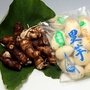 山形特産洗い里芋(特選A品500g×1袋)|yamagata-umaies