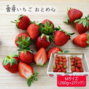 雪芽いちごおとめ心Mサイズ(260g×2パック)|yamagata-umaies