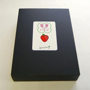 雪芽いちご(Lサイズ×15粒)[ギフトBOX入]<1月上旬頃より発送>箱入 yamagata-umaies 03