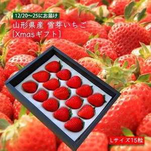 【クリスマスギフト】山形県産[雪芽いちご]Lサイズ×15粒|yamagata-umaies