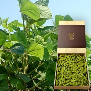 與惣兵衛の白山だだちゃ豆[桐箱入り1.2kg]|yamagata-umaies