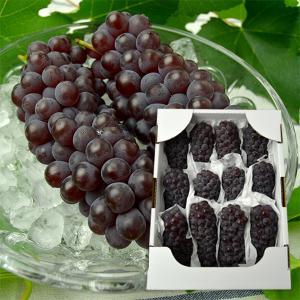 山形本沢ぶどうデラウエア約2kg(L〜2L/12〜16房) yamagata-umaies