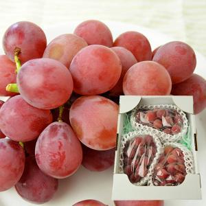 山形本沢ぶどう安芸クイーン1.5kg以上(3〜5房)|yamagata-umaies