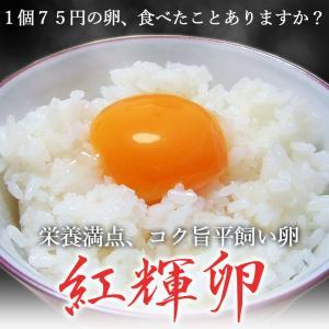 手づくり卵農場の平飼い卵★紅輝卵(こうきらん)30個入り|yamagatamaru