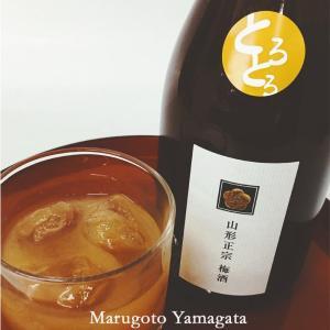 父の日 ギフト プレゼント 山形正宗 とろとろ梅酒 720ml 日本酒 山形 地酒 プレゼント yamagatamaru