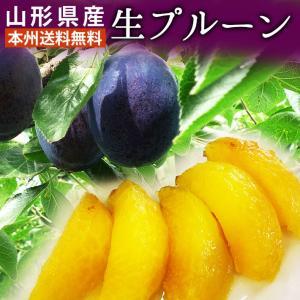 プルーン すもも 山形県産生プルーンお徳用(5〜6玉)×2パック