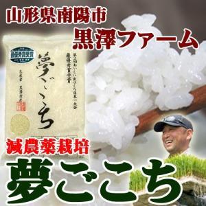 白米 お米 2kg 山形 黒澤ファーム 夢ごこち 年度米 令和元年|yamagatamaru