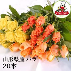 父の日 ギフト プレゼント バラ 20本 山形県 寒河江市産 大沼バラ園 切り花 生産者直送 送料無料 ピンク系 赤系 オレンジ黄色系 から選べます|yamagatamaru