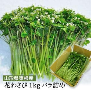 2月〜3月発送 山形県産 花わさび 約1kg バラ詰 期間限定商品