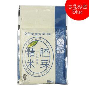 無洗米 はえぬき 胚芽精米 5kg 送料無料 山形県産|yamagatamaru