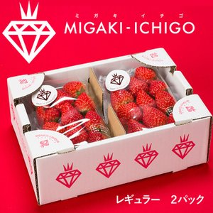 いちご ミガキイチゴ レギュラー 2パック 1箱 送料無料|yamagatamaru