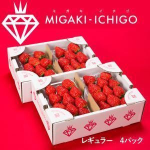 いちご ミガキイチゴ レギュラー 4パック 1箱 送料無料|yamagatamaru