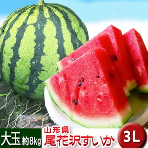 最高級 尾花沢スイカ すいか 3L 約8kg 送料無料 山形県 贈答用 大玉|yamagatamaru