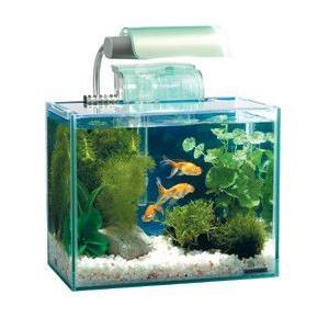 【特長】 ・フレームレス水槽にライトと外掛け式フィルターの付いたセット水槽 ・フレームのないすっきり...