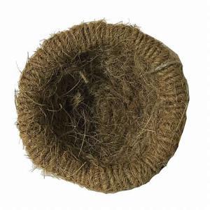 川井『ココナッツ 皿巣』の詳細画像1