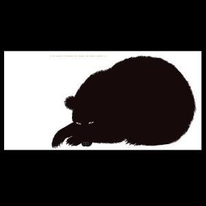 DANESE(ダネーゼ)「Sei l'orso」|yamagiwa