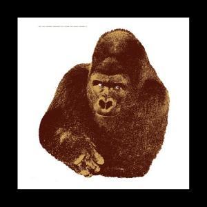 DANESE(ダネーゼ)「Quindici il gorilla」|yamagiwa