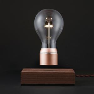 プレミアム会員限定!ポイント最大27倍|照明インテリア おしゃれ|FLYTE(フライト)Buckminster(バックミンスター)|yamagiwa