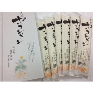 【山口県】【光市】【三井ヘルプ】【ヤーコン】ヤーコン麺(10000312)|yamaguchikaiseidou