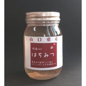【天然】【山口県産はちみつ】【希少】ハゼノキはちみつ500g|yamaguchikaiseidou