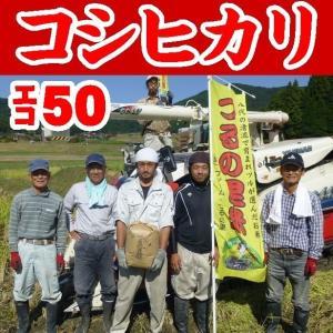 【送料無料】【生産者直詰】【玄米】つるの里米こしひかり20kg※別途送料、東北500円、北海道・沖縄1000円かかります※|yamaguchikaiseidou