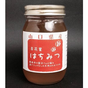 【天然】【山口県産はちみつ】百花蜜500g|yamaguchikaiseidou
