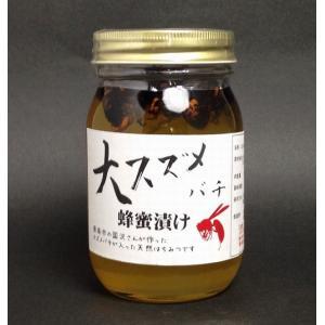【天然】【山口県産はちみつ】大スズメ蜂はちみつ漬け500g|yamaguchikaiseidou