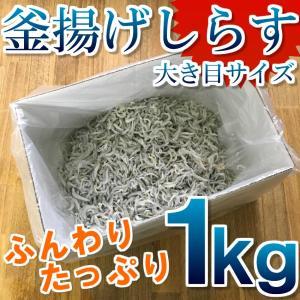【愛知県産】 釜揚げしらす 1kg 大き目サイズ 無添加、無漂白 ちりめんじゃこ 白筋混じりあり 冷凍便 品番17|yamaichi-rise