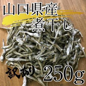 山口県産 煮干し 250g  ※頭がとれているものも含む訳あり商品となります。|yamaichi-rise