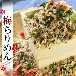 梅ちりめんふりかけ 100g yamaichi-rise