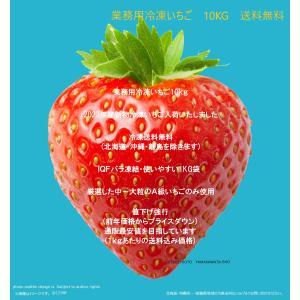 冷凍いちご(削り用にも)業務用冷凍いちご(全粒)10kg (発送目安2営業日内)