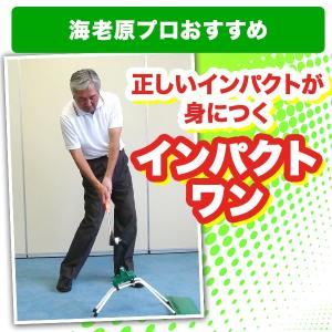 ゴルフ 練習機 インパクトワン 送料無料 海老原プロ推奨 いつでもお部屋でゴルフ練習出来て上達できる