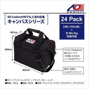 AO Coolers エーオークーラー 24 パック キャンバス ソフトクーラー/ブラック AO24BK クーラーボックス yamakei02 02