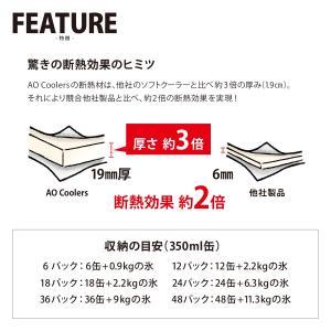 AO Coolers エーオークーラー 24 パック キャンバス ソフトクーラー/ブラック AO24BK クーラーボックス yamakei02 06