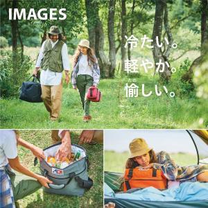 AO Coolers エーオークーラー 24 パック キャンバス ソフトクーラー/ブラック AO24BK クーラーボックス yamakei02 07
