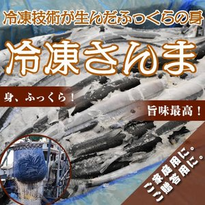 冷凍サンマ・冷凍さんま 10kg(77〜83尾)