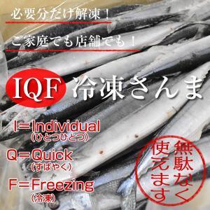 IQF冷凍サンマ・さんま・秋刀魚 7.5kg(50尾)