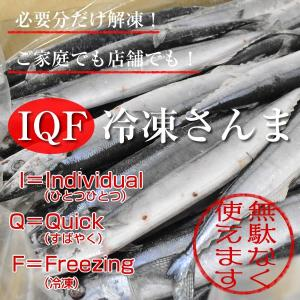 IQF冷凍サンマ・さんま・秋刀魚 7.5kg(60尾)