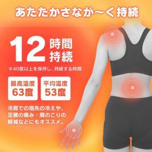 アイリスオーヤマ ぽかぽか家族 貼るタイプ レギュラー(カイロ) 30個入|yamakishi|02