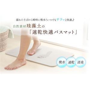 アイリスオーヤマ 速乾快適バスマット【Lサイズ】 SKBM-6039