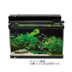 GEX ジェックス ラピレスRV60DT LEDセット (水槽セット)