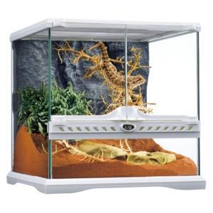 ●本体サイズ(約):幅31.5×奥行31.5×高さ33cm ●爬虫類・両生類飼育用ケージ<br...