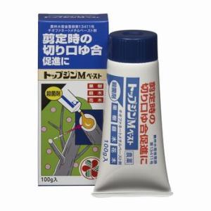 住友化学園芸 トップジンMペースト(殺菌剤) 100g