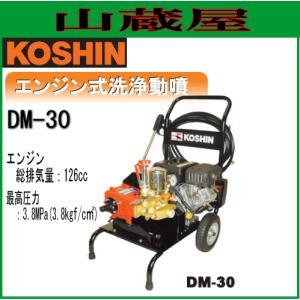 工進 工進 エンジン式洗浄動噴 DM-30/{KOSHIN}|yamakura110
