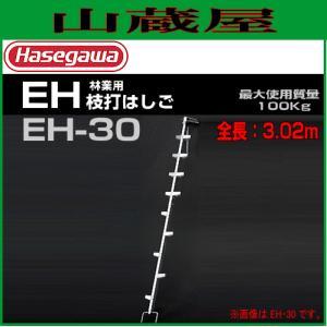 長谷川工業 林業用 枝打ちはしご EH-30 全長 3.07m/有効長 2.92m|yamakura110