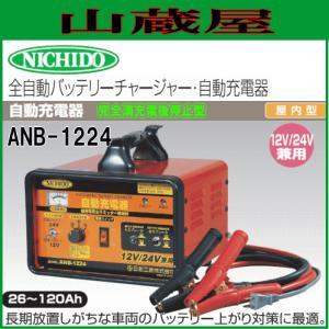 日動工業 自動充電器 ANB-1224 12V/24V車兼用 yamakura110