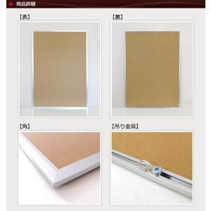 お得な10枚セット ポスターフレーム B1 (728x1030mm) シルバー アルミ製 額縁|yamamoku-gifu|02