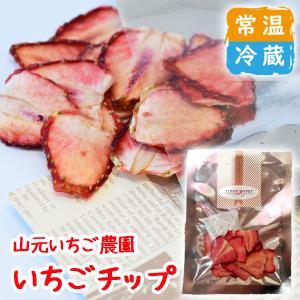 いちごチップス|yamamoto-ichigo15