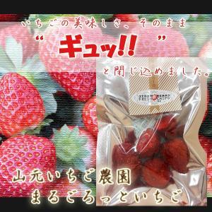 まるごろっといちご|yamamoto-ichigo15